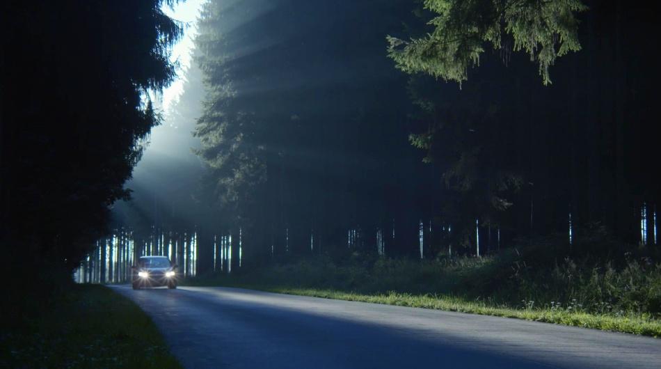 Trailer du Film Forêt de Samuel Feller Magellan Films CATLIKE production 2020